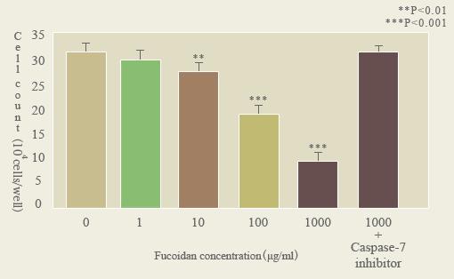 PBLに対するフコイダンの影響