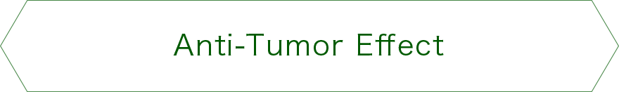 Anti-Tumor Effect