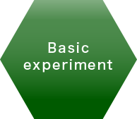 Basic experiment