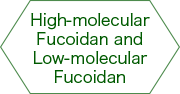 High molecular weight fucoidan & Low molecular weight fucoidan