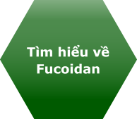 Tìm hiểu về Fucoidan