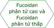 High molecularweight fucoidan & Low molecular weight fucoidan